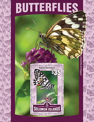 SOLOMON ISLANDS 2016 MNH BUTTERFLIES 1V S/S INSECTS BUTTERFLY STAMPS