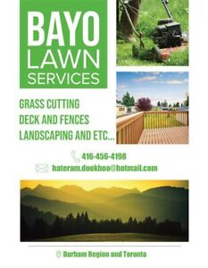 Snow removal, lawn care, cleaning services and etc...