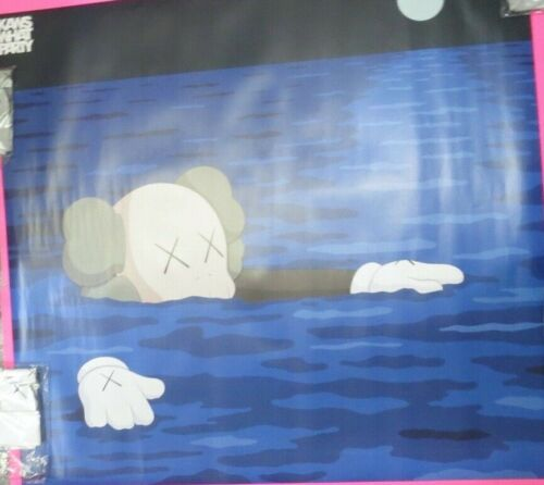 TIDE HUGE KAWS WATER CAMO Poster Print BROOKLYN MUSEUM 48 x 48 WHAT PARTY NEW