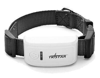 TKStar mini GPS Tracker Ortung GSM Peilsender Hund Tier Halsband APP Onlinep
