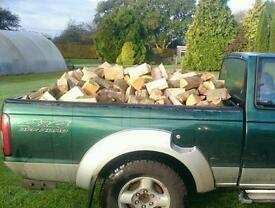 Seasoned Chestnut Logs