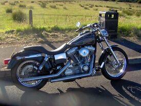 2000 Harley Davidson FXD superglide custom