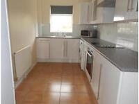 4 bedroom student house available now