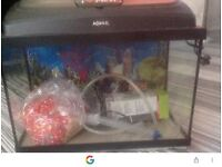 50ltr Fishtank with loads off accessories