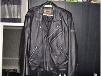 skintan motorcycle leather jacket slim fit