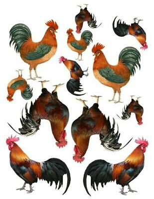 Country Roosters Full Sheet Waterslides Decals #36