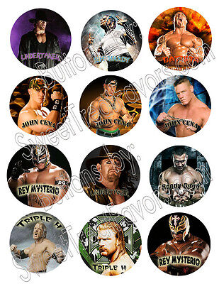 WRESTLING WWE Party Supplies 12 PINS Buttons FAVORS Decoration Birthday Treats * - Wwe Party Favors