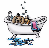 Dog & Cat Grooming/DogTraining Boarding (905)392-7467inNewmarket