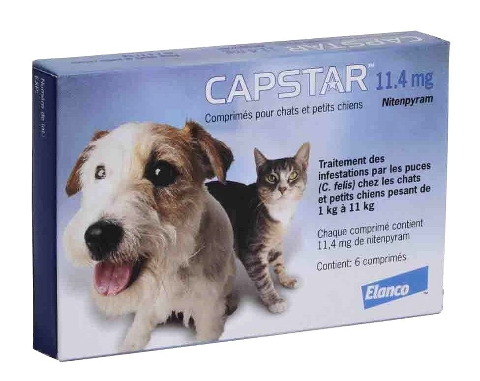 Купить Capstar - CAPSTAR Blue 6 Tablets for Cats & Dogs under 25 lbs - FAST FREE SHIPPING -