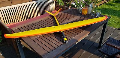 Bird Elektro Segler Spannweite 1,5m