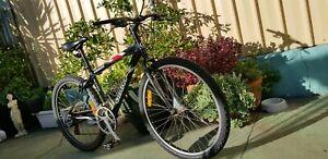 Male or Female Mountain Bike )