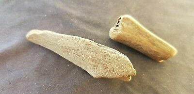 VR Viking Domestic animal bone smoothed gaming pieces Please read desc. L361