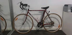 Vintage 12 speed Road Bike