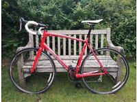 Specialized Allez road bike (61cm) for sale