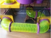 Hamster cage full set up