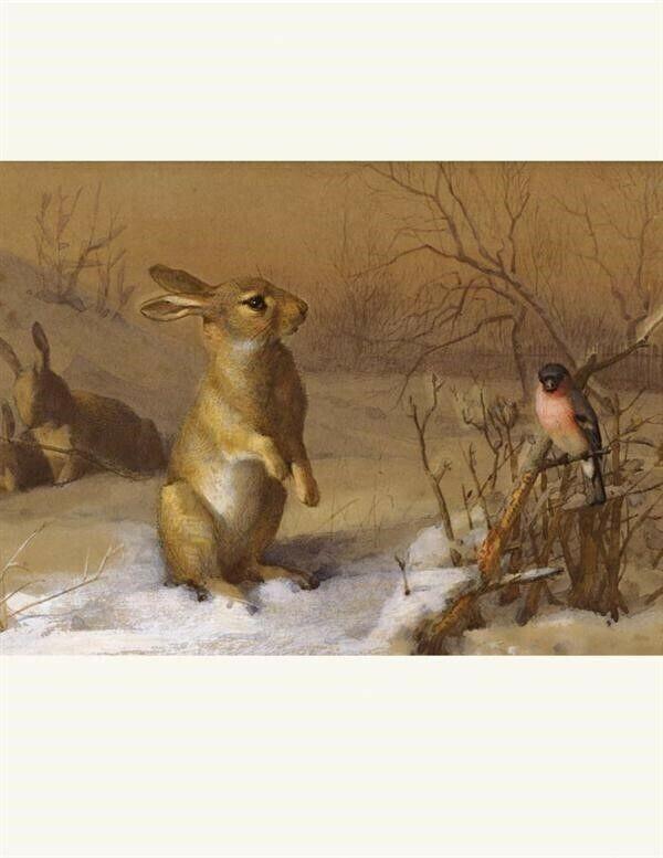 Victorian Trading CO Rabbit & Bullfinch Archibald Thorburn Print Free Ship NIB