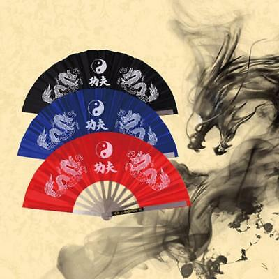 Chinese Kung Fu Martial Arts Tai Chi Training Double Dragon Stainless Steel Fan (Dragon Kung Fu Training)