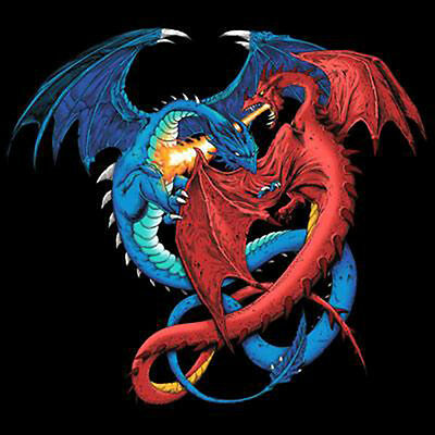 Dragon Duel T Shirt Two Dragons Fighting Tee