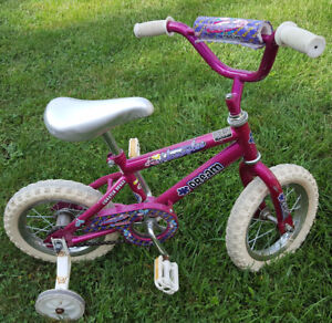 Bicycle with Training Wheels - Honey Bee
