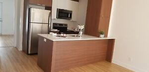 NEW, RENOVÉ,18 AVE,  1/2, LOUER, RENT