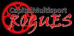 Capital Multisport Rogues, LLC