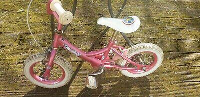 Little Kids Pink Vintage Molly Bike Age 3-5
