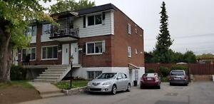 Duplex - à vendre - Pierrefonds-Roxboro - 18044252