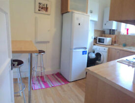Double room in a clean flat, opposite to Roehampton Uni. 5-10min walk to Barnes Train