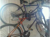 Mountain bike gents and ladies raleigh