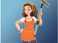 Reliable Domestic Cleaner £10.50/h in Golders Green, West Hampstead, Dollis Hill