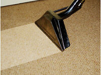 Carpet Cleaning, car upholstery and Cleaning the Gutters, Driveways, PATIO.