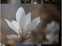 Large Canvas IKEA Picture - simply stylish.