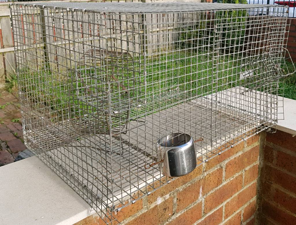 Strong chew proof rat cage with wheel