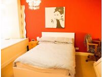 Large Bright Double Room in Central Flat