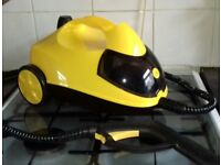 Little yello steam cleaner and attachments