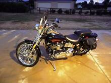 RARE Harley Davidson HD Springer Softail FXSTS Noranda Bayswater Area Preview