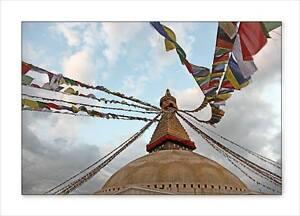 25 Tibetan Buddhist Prayer Flag 5