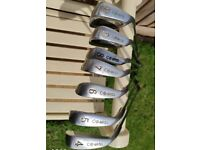 Second Hand Golf Clubs : 10 in total (ideal for newcomer to the game)