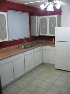 needed kitchen cabinets resurfaced,  to look more modern
