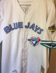 1993 World Series Joe Carter Toronto Bluejays Jersey