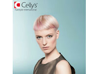Looking for hair stylists/ hairdressers (NVQ 1, 2 and 3 accepted) at Celly's Cheltenham branch!