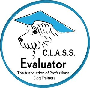 Dog Obedience Classes - 8 weeks - $99 London Ontario image 2