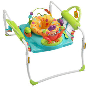 Baby Fisher Price First Steps Jumperoo