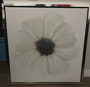Moving Sale! Multiple Canvas Pictures and Mirror.