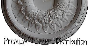 Premium Plaster Distribution