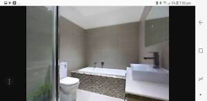 Bathroom Renovation Brother's......