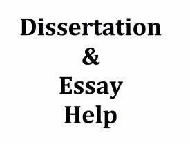 expert help dissertation assignment essay proposal programming  dissertation assignment thesis essay writing help spss stata matlab writer help