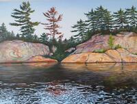 Georgian Bay Artist