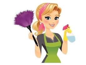 Cranleigh Domestic help, cooking cleaning and ironing job.