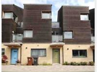 1 Bedroom self contained apartment/house wanted